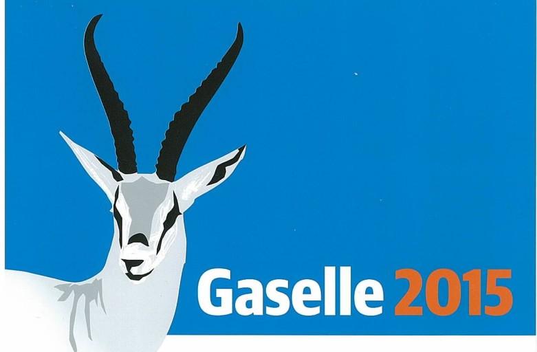 Hedemarken regnskap er Gaselle-bedrift